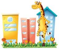 Une girafe se tenant devant les édifices hauts illustration stock