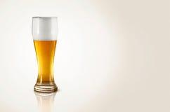 Une glace de bière Photographie stock libre de droits