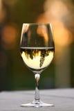 Une glace de vin blanc Photographie stock libre de droits