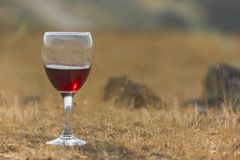 Une glace de vin rouge Photo stock