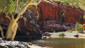 Une gomme de fantôme et une lumière du soleil sur l'eau de la gorge d'ormiston dans les gammes occidentales de macdonnell image stock