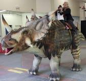 Une grand-mère et une petite-fille montent un Styracosaurus chez T-Rex Pl Images libres de droits