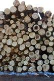 Une grande pile des troncs d'arbre fra?chement sci?s, en raison de la notation industrielle images libres de droits
