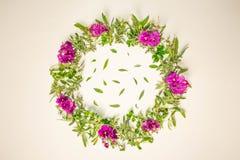 Une guirlande des violettes sur un fond blanc Cadre rond des fleurs pourpres et de l'herbe fraîche Fleurs d'été Configuration pla photographie stock