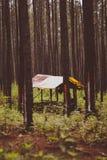 Une hutte dans la forêt image stock