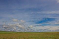 Une image d'un beau paysage de ressort de steppe Image stock
