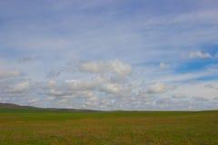 Une image d'un beau paysage de ressort de steppe Photos libres de droits