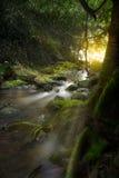 Une image de cascade pendant le matin avec le soleil rayonne Photographie stock