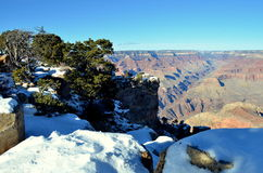Parc national de canyon grand Images stock