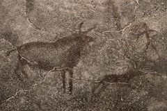Une image des animaux antiques sur le mur de la caverne Images libres de droits