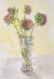 Une image douce de belles fleurs un aster dans un verre Photo libre de droits