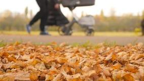 Une jeune famille marchant avec la voiture d'enfant Mouvement lent clips vidéos