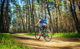 Une jeune femme - cycliste dans un casque montant un vélo de montagne en dehors de la ville, sur la route dans une forêt de pin Photographie stock