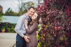 Une jeune femme enceinte et son mari Une famille heureuse se tenant à la haie rouge d'automne, tenant le ventre femme enceinte dé Photographie stock libre de droits