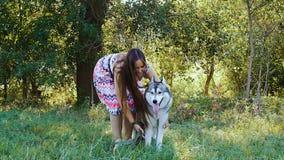 Une jeune femme joue dans la forêt avec un chien enroué banque de vidéos