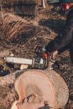 Une jeune femme lance une tronçonneuse pour couper le bois dans la campagne image stock