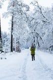 Une jeune femme marche dans la forêt d'hiver Images libres de droits