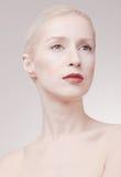 Une jeune femme, pâlissent la peau, cheveux gris blancs, retouchent le portrait Images stock
