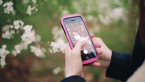 Une jeune fille prend des photos des fleurs utilisant un smartphone banque de vidéos