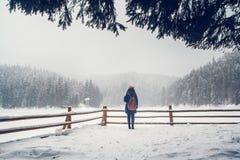 Une jeune fille a une promenade par une forêt épaisse pendant un beau jour d'hiver photographie stock