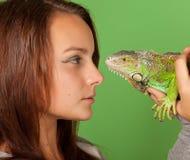 Une jeune fille regarde fixement l'iguane Photographie stock libre de droits