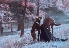 Une jeune princesse dans une robe de vintage avec un long train, avec la tendresse et amour, étreint son cheval La fille de brune Image stock