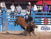 Une La Fiesta De Los Vaqueros, Tucson, Arizona photos libres de droits