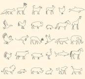 Une ligne animaux réglés, logos Illustration courante de vecteur La Turquie et la vache, le porc et l'aigle, la girafe et le chev Photos stock