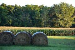 Une ligne de foin attendant juste sur l'herbe Photographie stock libre de droits