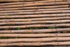 Une ligne de mur en bambou jaune qui se fanent et vieillissent par temps ฺฺ images libres de droits