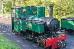 Une locomotive à vapeur reconstituée de cru à la lumière du soleil tachetée d'automne image libre de droits