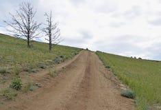 Une longue route au ciel nuageux, à l'horizon Photo stock