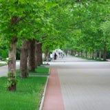 Une longue ruelle en stationnement photo libre de droits
