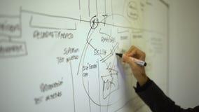 Une main d'homme dessine et écrit dans un tableau blanc banque de vidéos