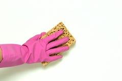 Une main dans le rose Image stock