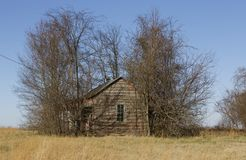 Une maison abandonnée envahie avec la brosse Photo libre de droits