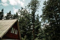 Une maison dans la forêt photos libres de droits