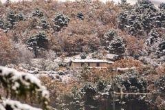 Une maison dans les collines parmi les arbres couverts de neige photographie stock libre de droits