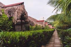 Une maison en bambou avec un toit couvert de chaume images libres de droits