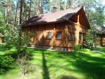 Une maison en bois dans la forêt de pin Images stock