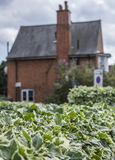 Une maison en brique rouge dans une distance Image stock