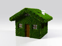 Une maison faite en herbe Photos stock