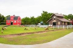 Une maison rouge dans la ferme de moutons Photographie stock libre de droits