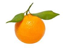Une mandarine Photos stock