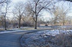 Une manière de promenade couverte par neige dans la lumière de matin photo stock