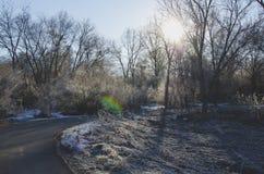 Une manière givrée de promenade dans la lumière de matin photos libres de droits