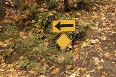 Une manière se connectent le côté de la route avec les feuilles d'automne colorées et les grandes fougères photos stock