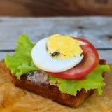 Une mouche se repose sur le sandwich photographie stock