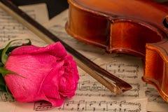 Une musique de violon, rose et de feuille Images libres de droits