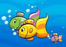 Famille de poissons tropicale Photo libre de droits